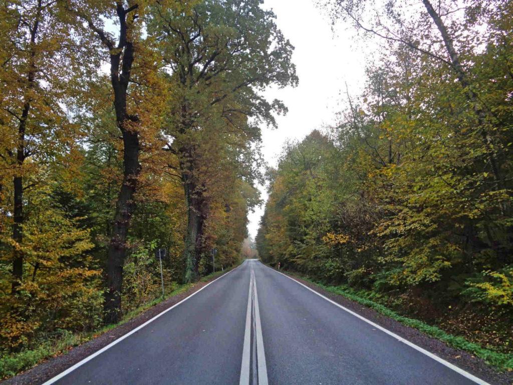 Droga Wojewódzka 966