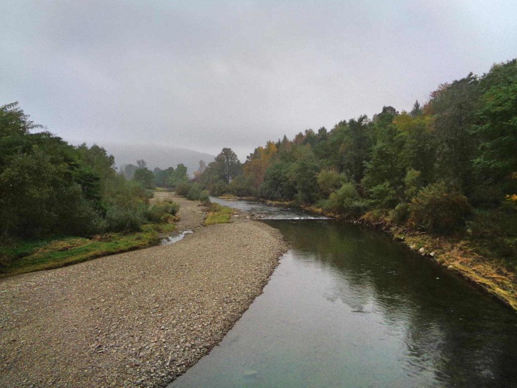 Rzeka Łososina