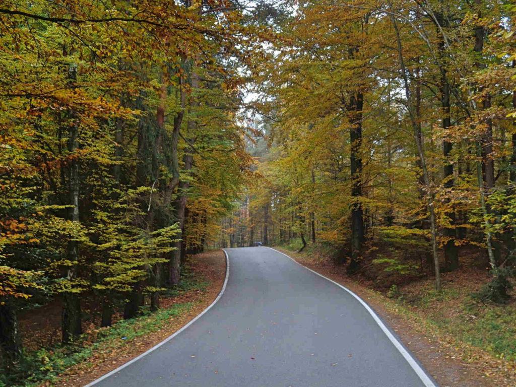 Wiśnicko - Lipnicki Park Krajobrazowy