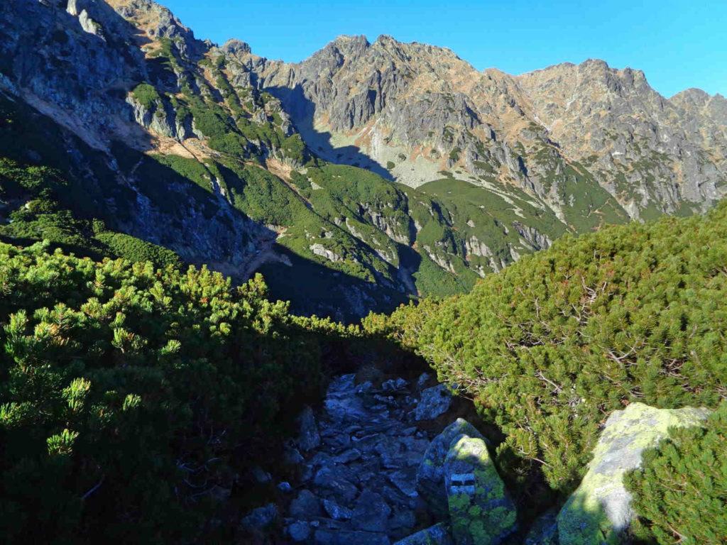 Zejście do Doliny Roztoki