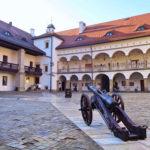 Zamek Królewski, Niepołomice