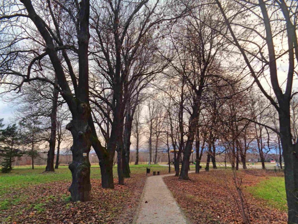 Dobczyce, park
