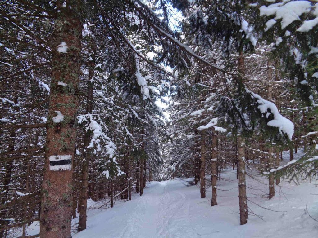 Dolina Starorobociańska, przejście zimą