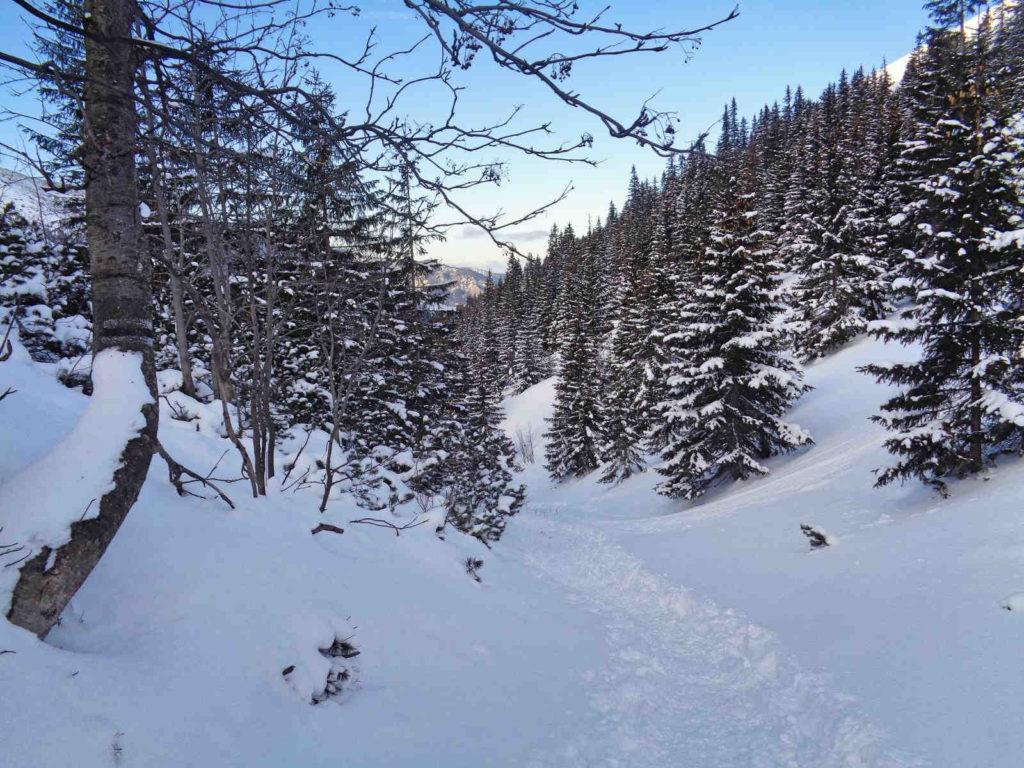 Dolina Starorobociańska, szlak zimą