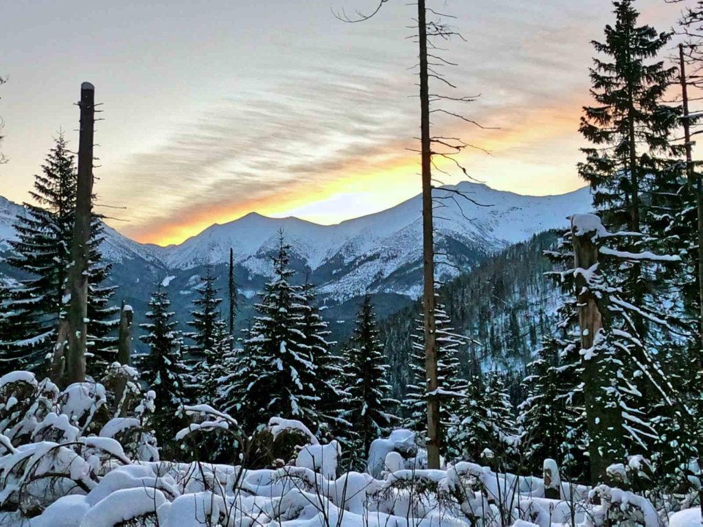 Iwaniacka Przełęcz, szlak w zimie