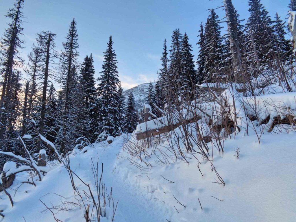 Ornak od Iwaniackiej Przełęczy zimą