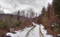 Ciecień, czerwony szlak w zimie