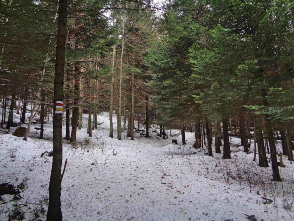 Ciecień zimą, szlaki