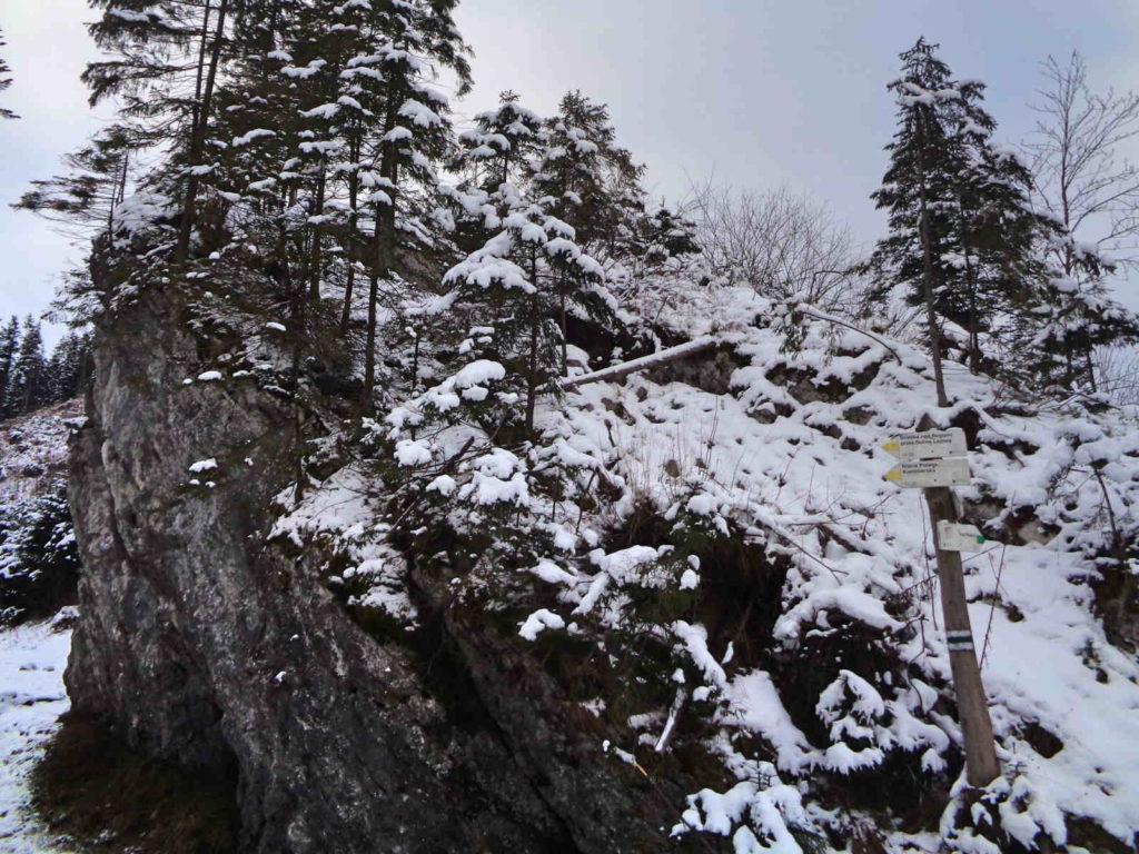 Dolina Lejowa, szlaki zimą