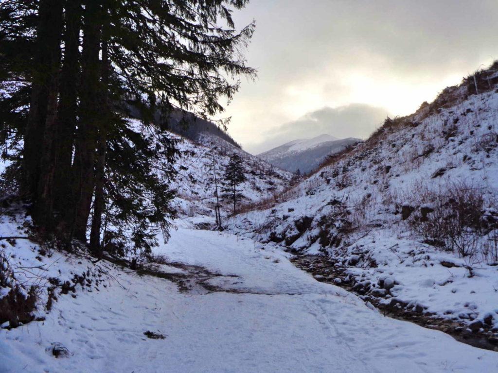 Dolina Lejowa w zimie