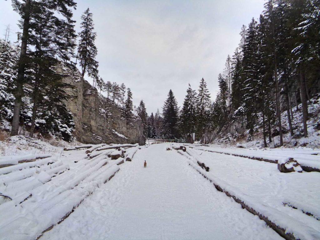 Dolina Lejowa zimą