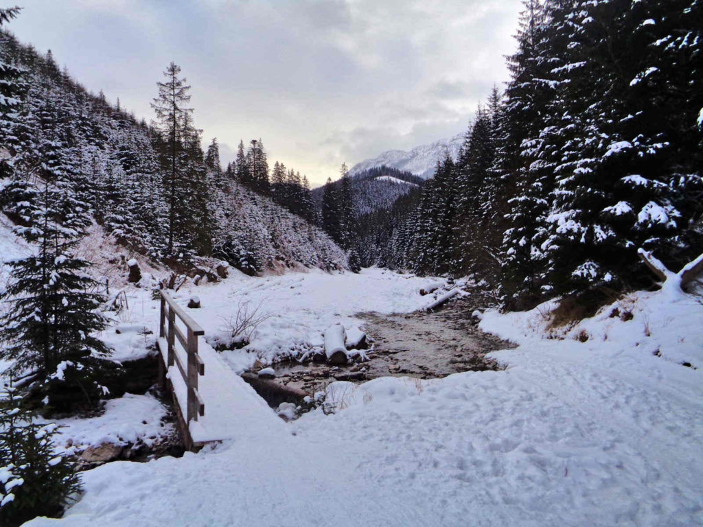Lejowy Potok w zimie