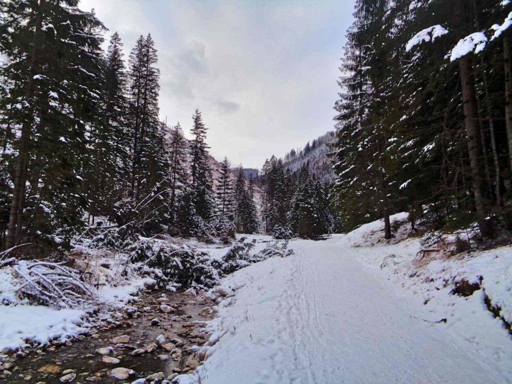 Lejowy Potok zimą