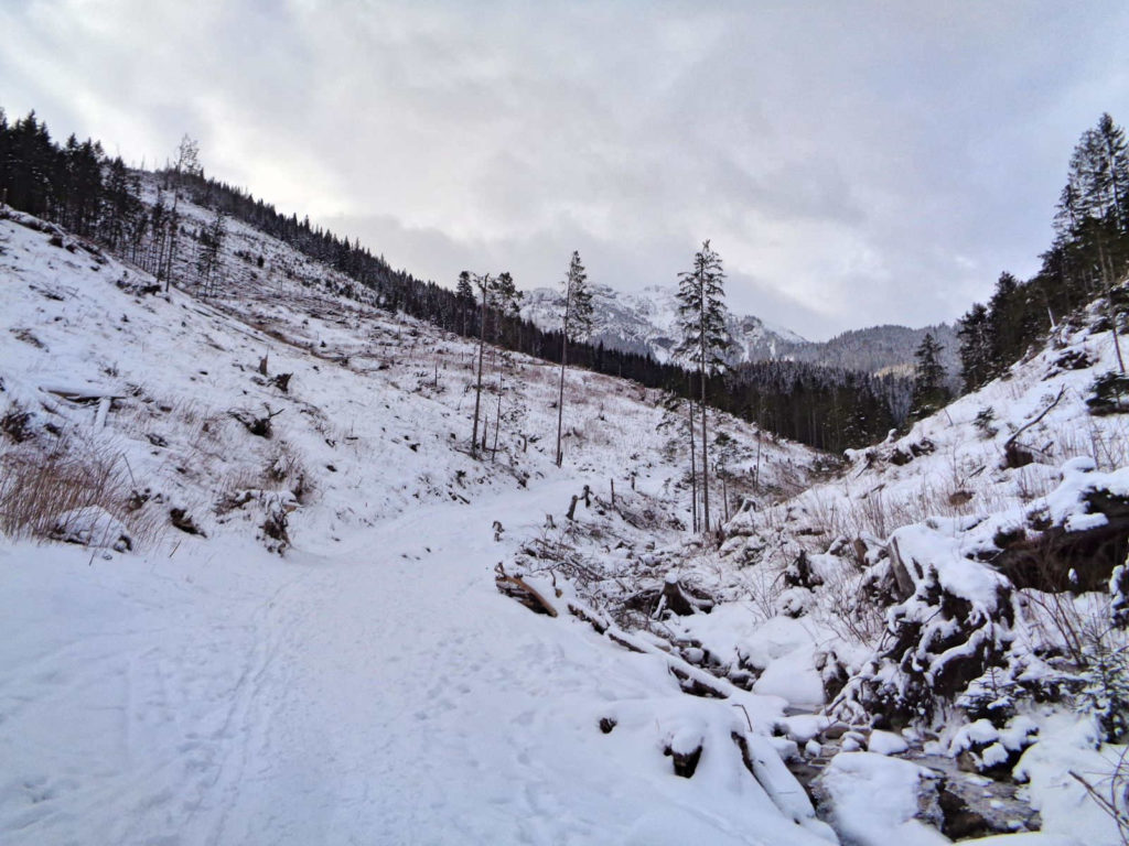 Szlak przez Dolinę Lejową zimą
