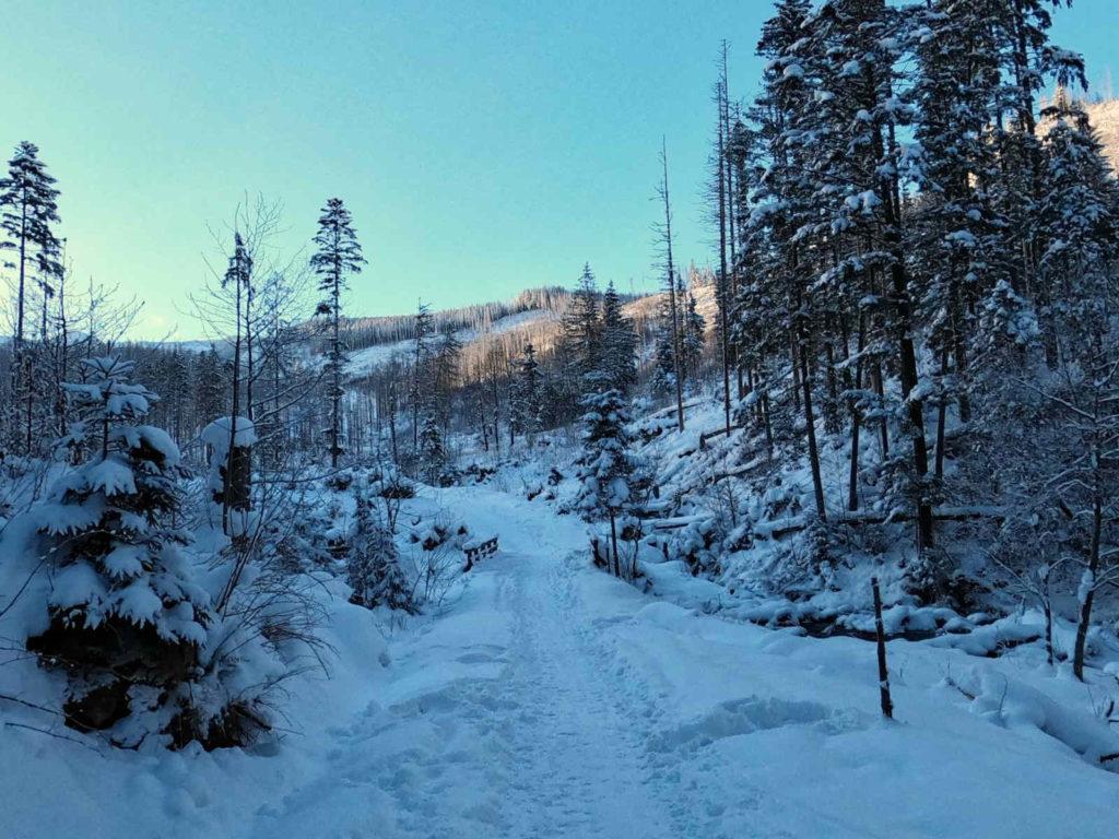 Dolina Olczyska, szlak w zimie