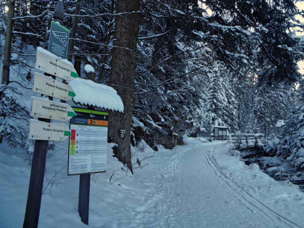 Dolina Olczyska, szlaki