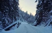 Dolina Olczyska zimą