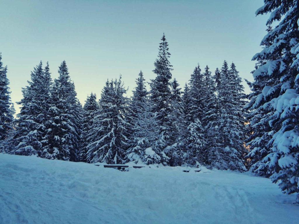 Olczyska Polana zimą