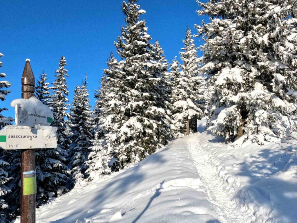 Szlak na Kopieniec zimą