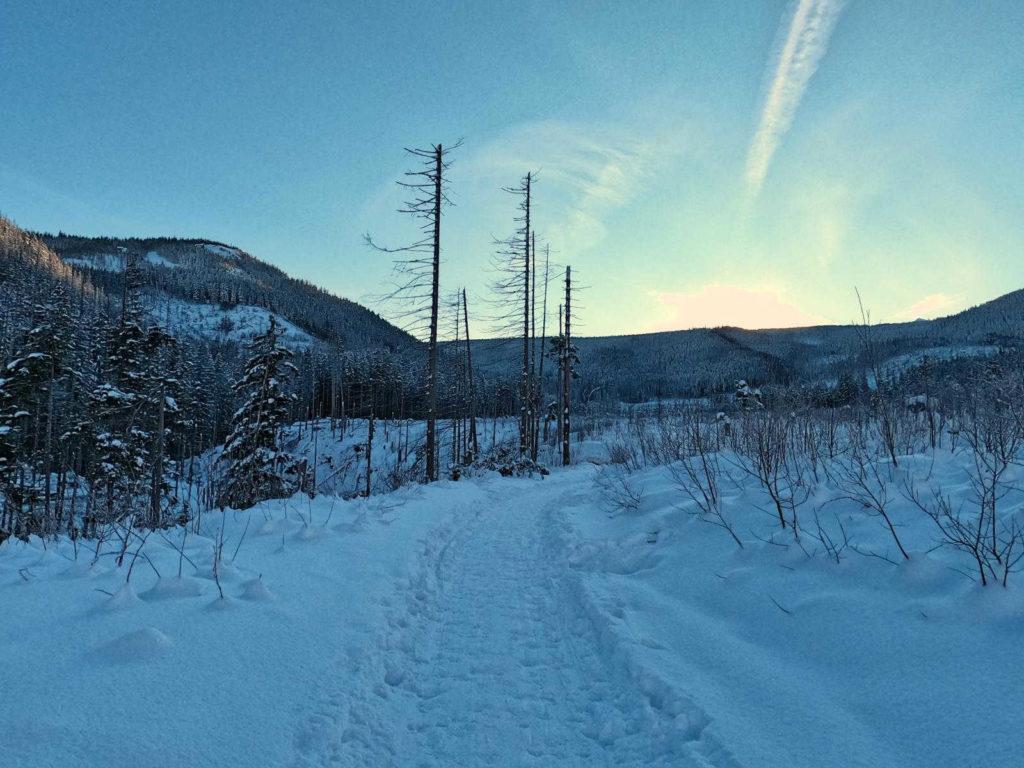 Szlak przez Dolinę Olczyską zimą