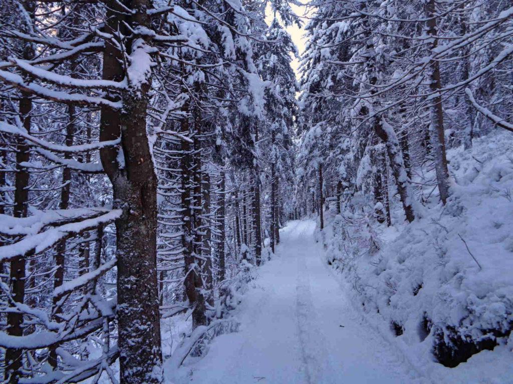 Dojście do Doliny Pięciu Stawów zimą