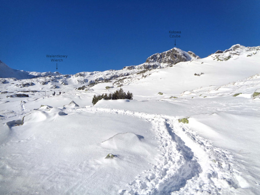 Dolina Pięciu Stawów, niebieski szlak