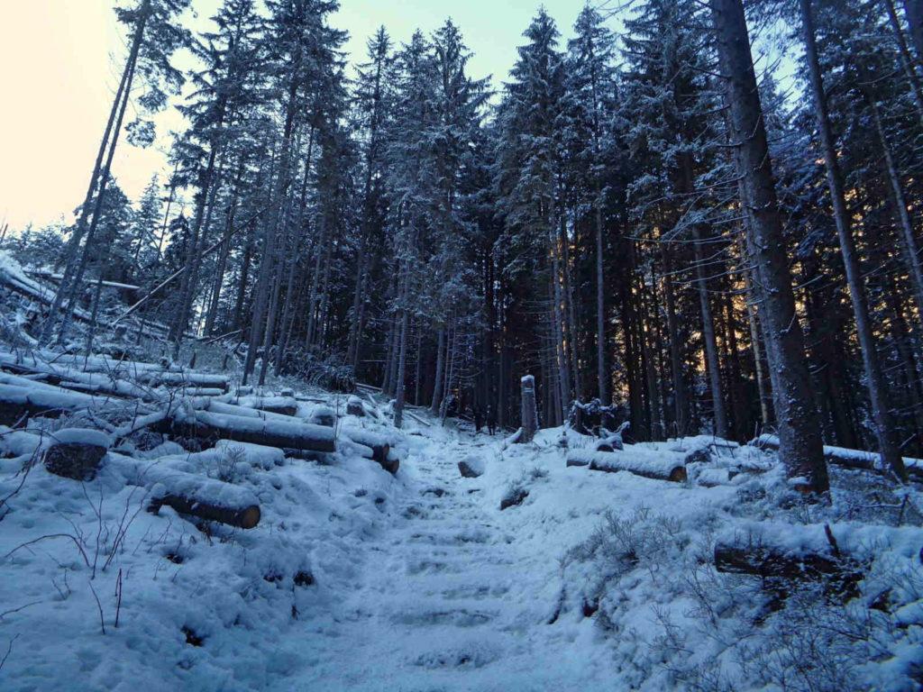 Dolina Pięciu Stawów, szlak w zimie