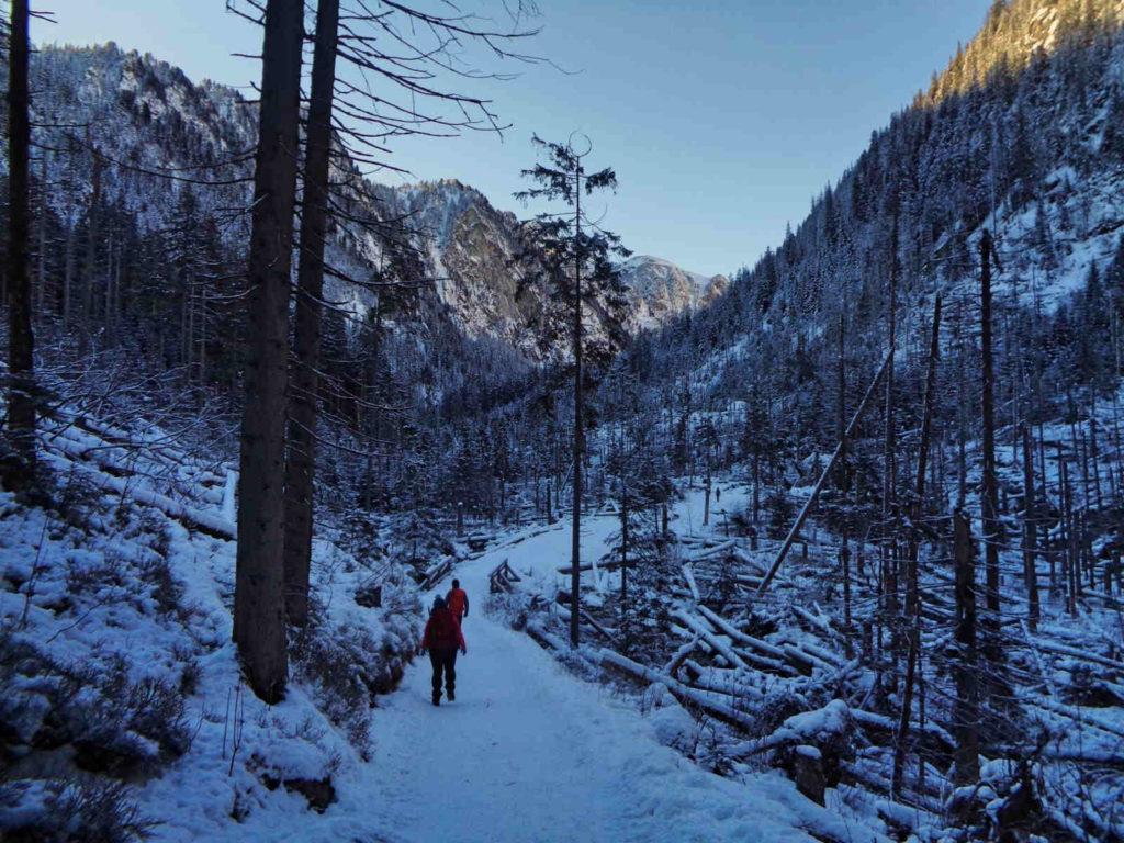 Dolina Pięciu Stawów, szlak zimą