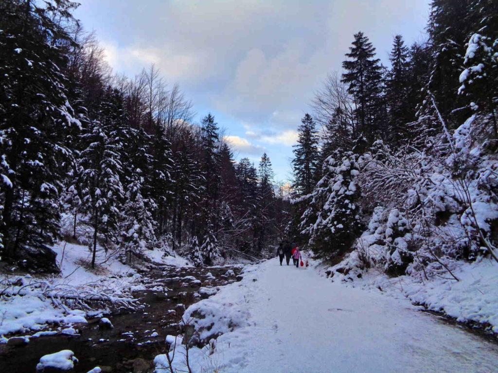 Dolina Strążyska, szlak w zimie
