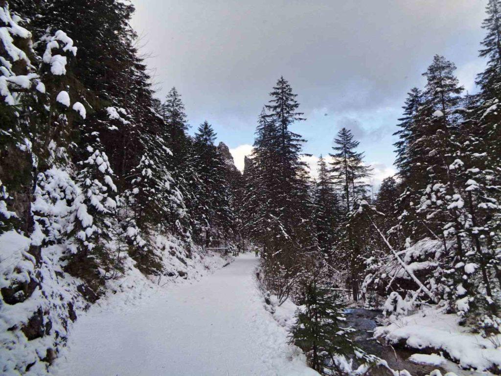 Dolina Strążyska, szlak zimą