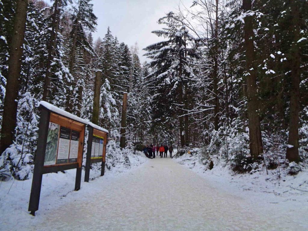 Dolina Strążyska, wejście