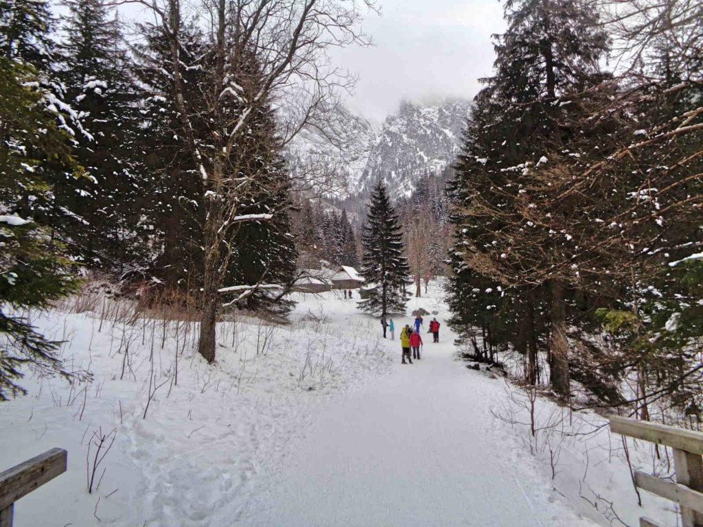 Dolina Strążyska zimą