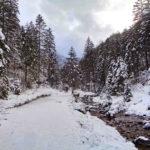 Strążyski Potok zimą
