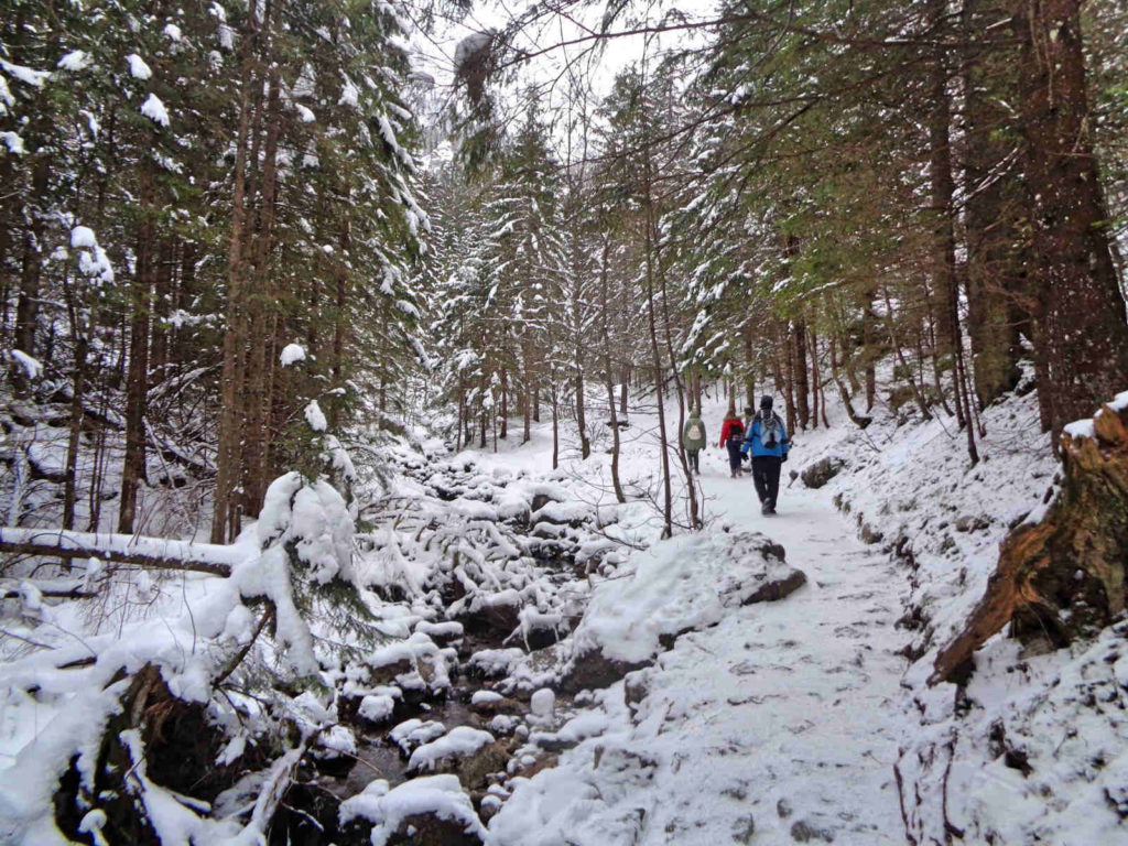 Szlak do Siklawicy zimą