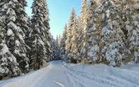 Czarny szlak do Murowańca w zimie