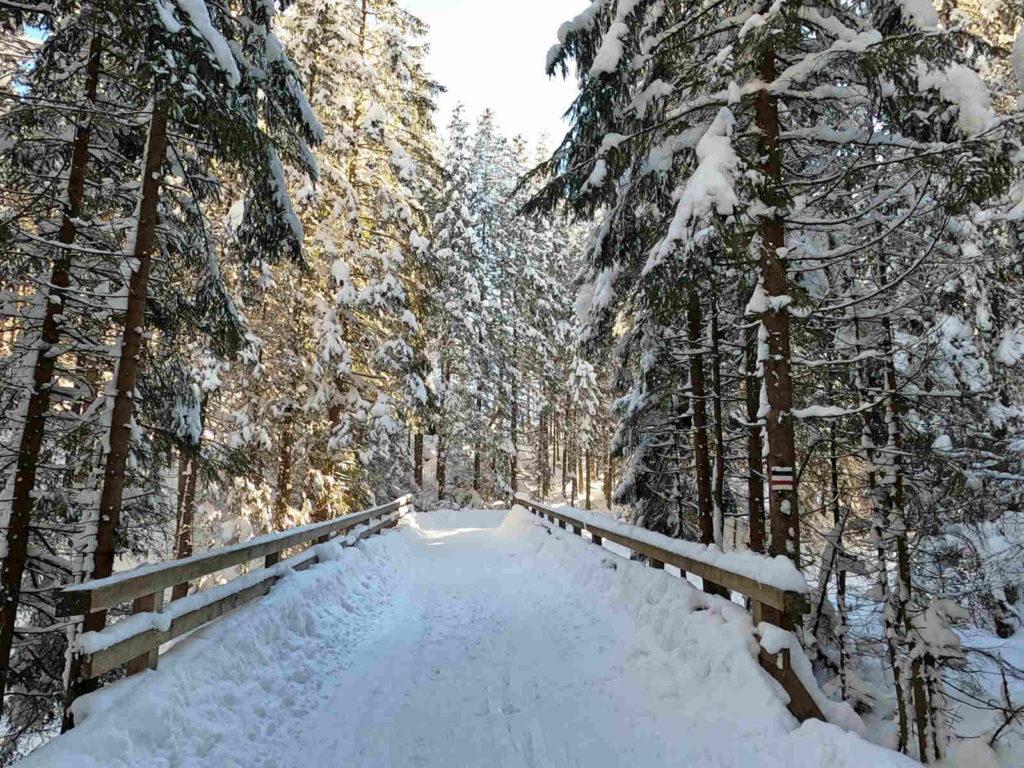 Dolina Suchej Wody, czarny szlak w zimie