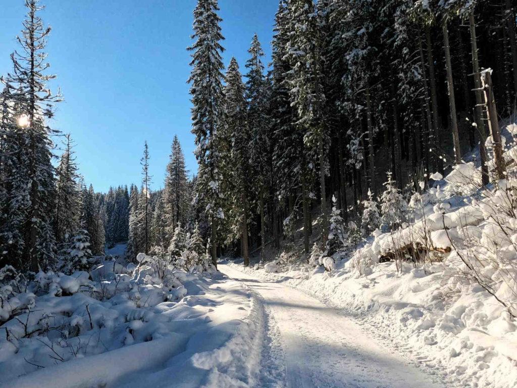 Dolina Suchej Wody, czarny szlak zimą