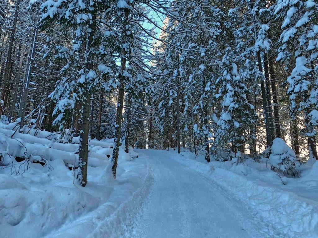 Dolina Suchej Wody, szlak w zimie