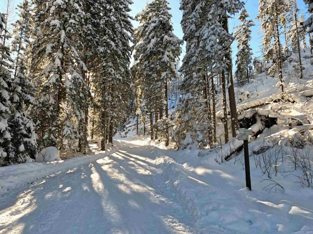 Dolina Suchej Wody, szlaki