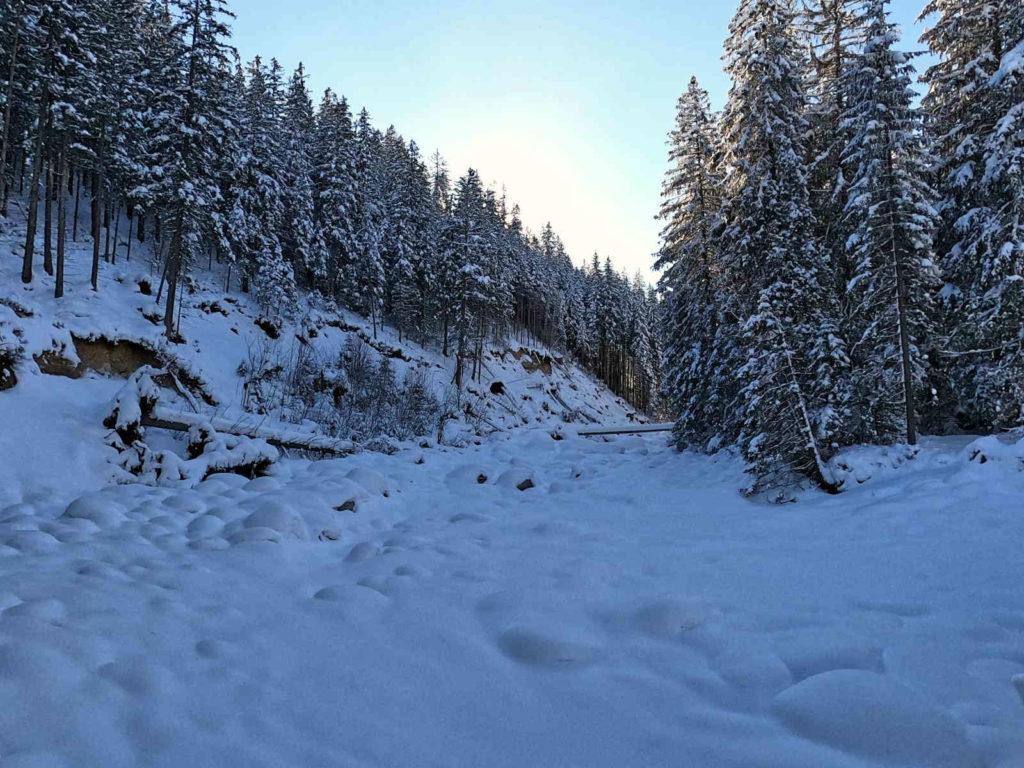 Dolina Suchej Wody w zimie