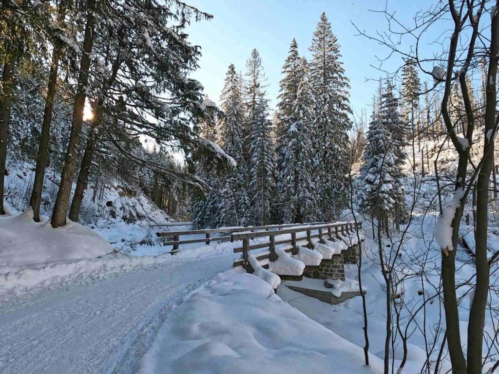 Dolina Suchej Wody zimą