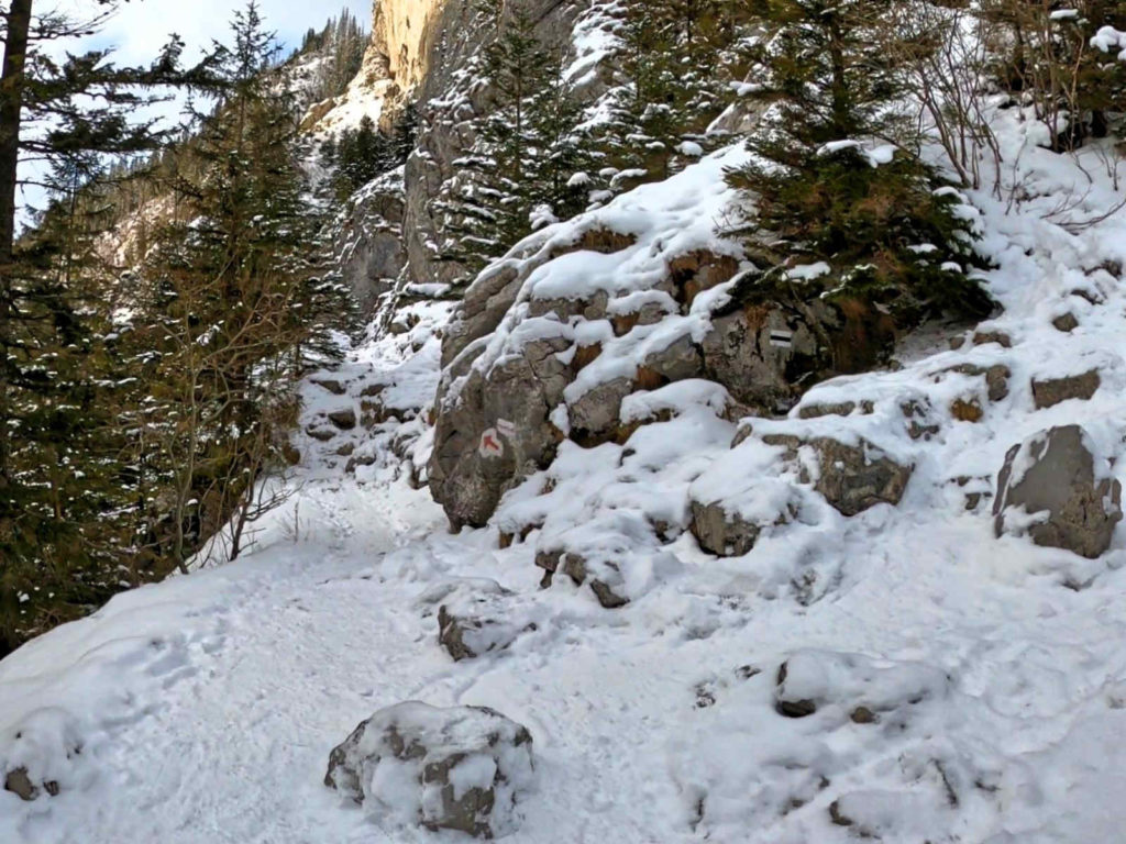 Jaskinia Mylna, szlak zimą