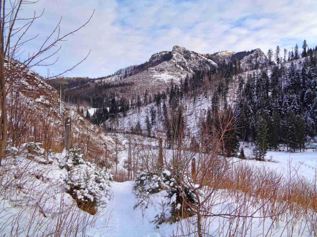 Ścieżka nad Reglami w zimie