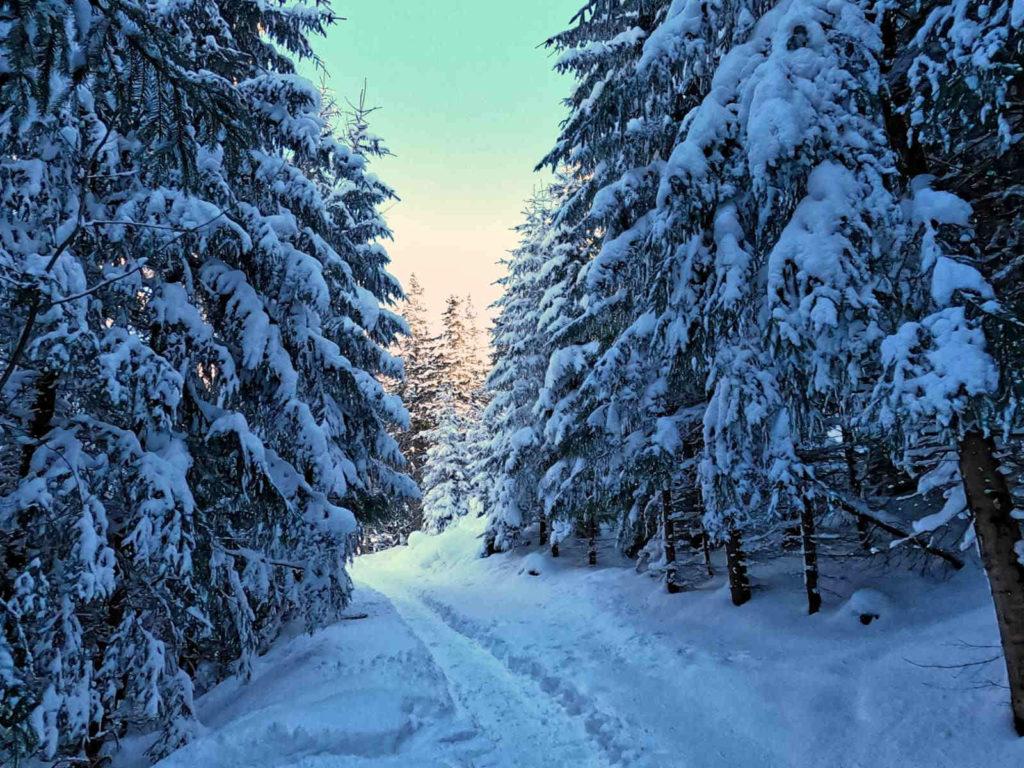 Klasztor Albertynów, szlak zimą