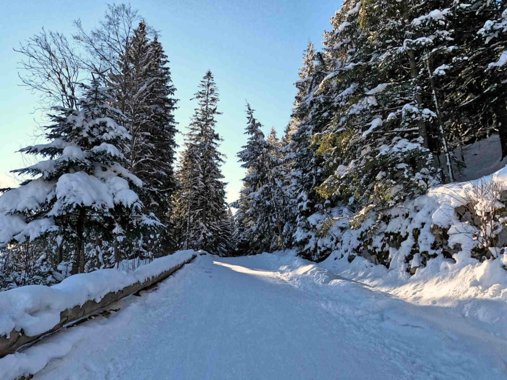 Kuźnice, niebieski szlak zimą