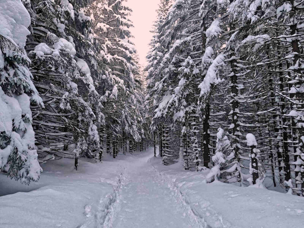Niebieski szlak na Halę Kondratową zimą