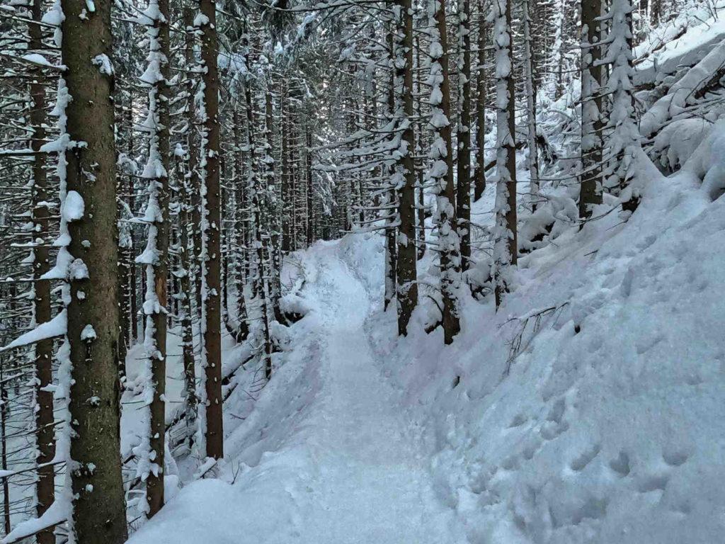 Szlak na Halę Kondratową-zima