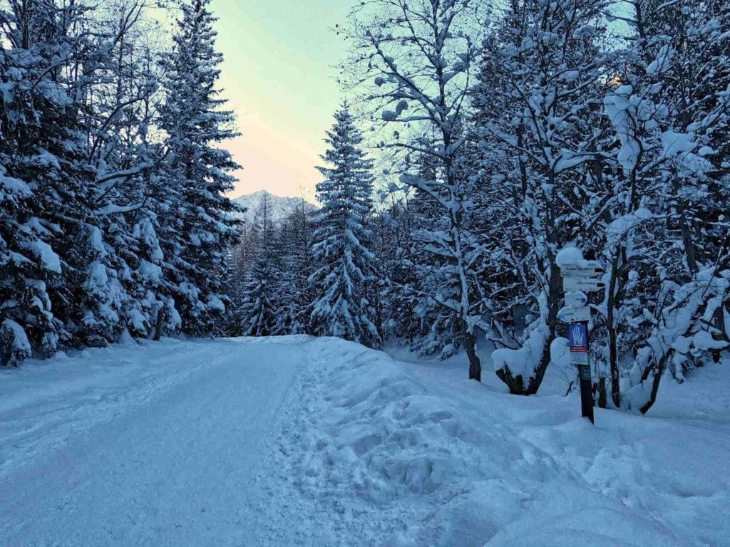 Szlak na Kalatówki zimą
