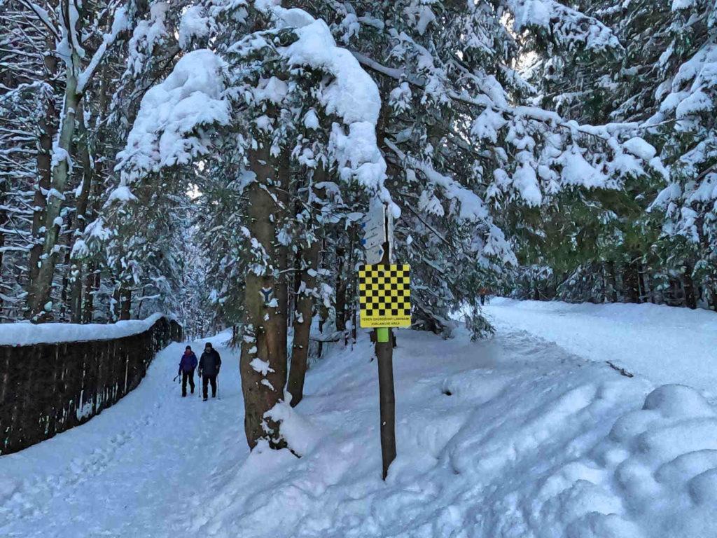 Szlaki na Kalatówki zimą