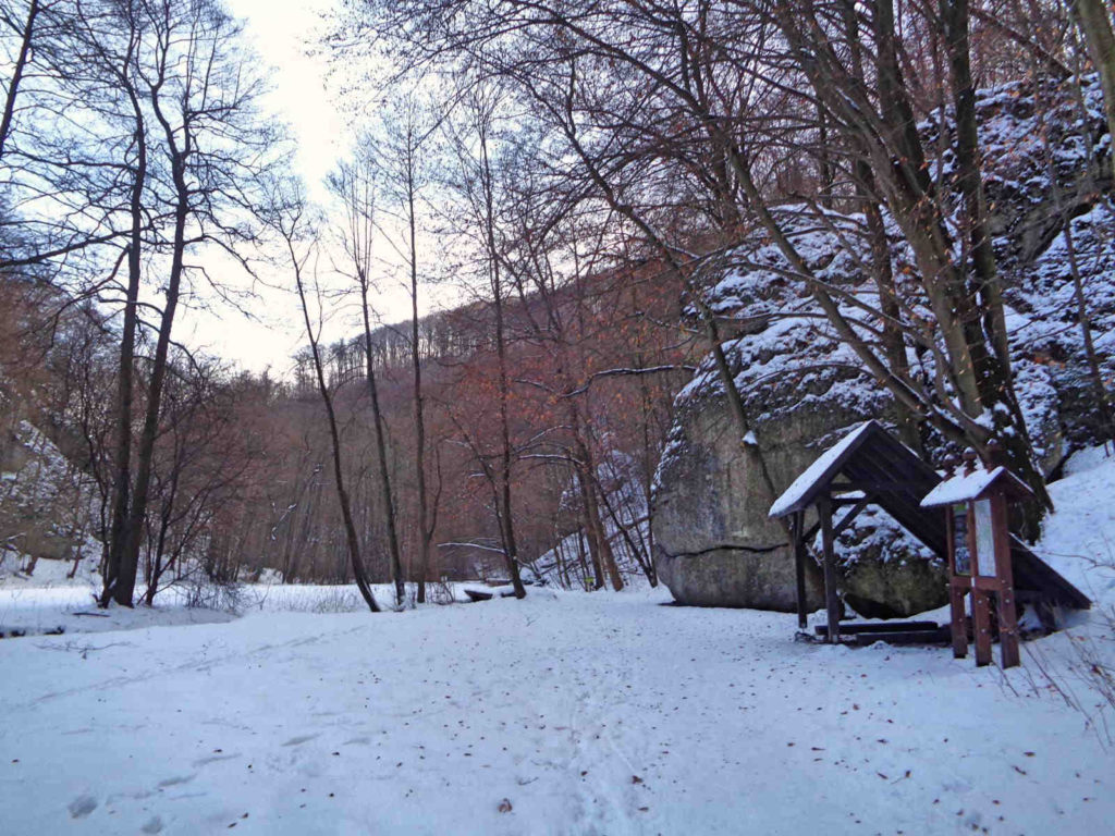 Dolina Sąspówki w zimie